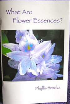 Flower Essence Book